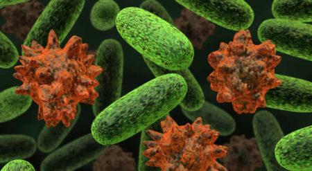 90 trilyon bakteri ile hergün beraberiz