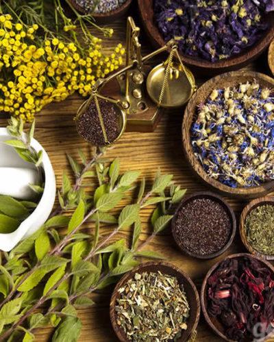 Bitkisel ürünler Eczanelerde satışa başladı | Bitkilerden gelen sağlık