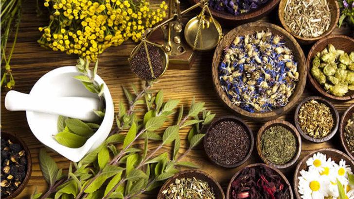 bitkisel ürün ile ilgili görsel sonucu