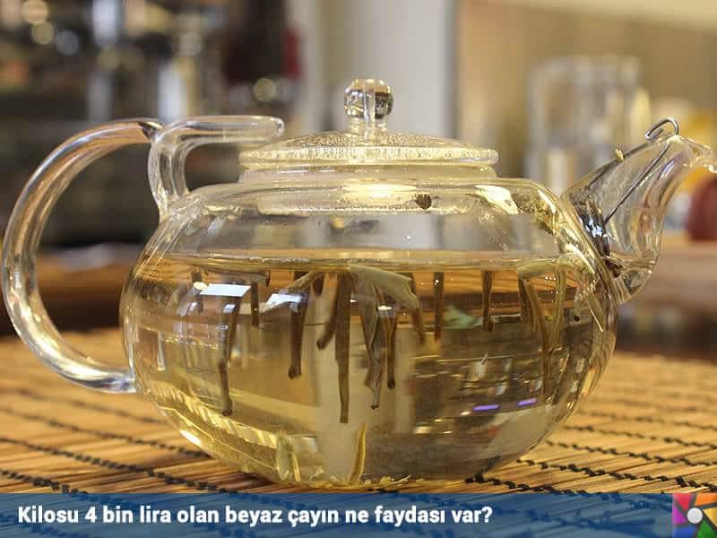 20 gr 80 liradan satılmakta olan Beyaz Çay kaynatılmaz, sıcak suda demletmek gerekir.