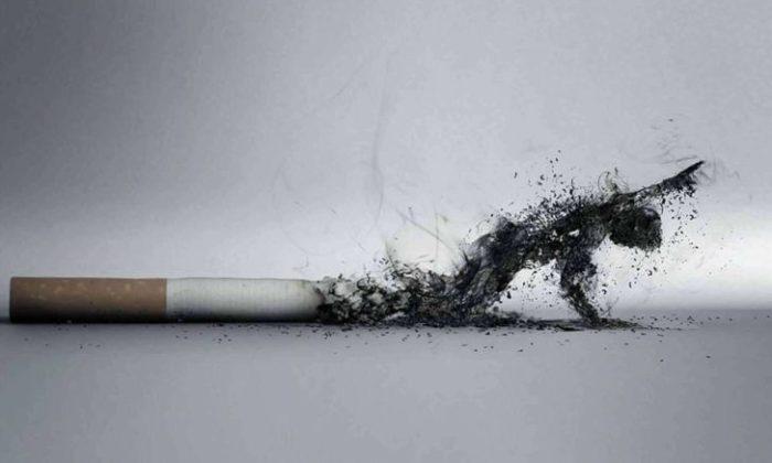 Sigaranın DNA'ya Etkileri