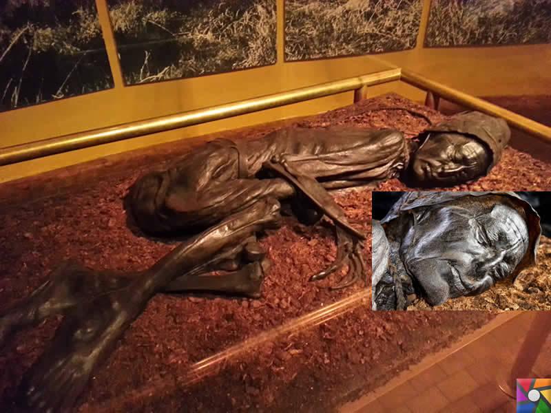 Tarihte bulunmuş 5 farklı mumyalama şekli   Danimarka'daki Bataklık Mumyaları   Tollund Adamı