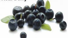 Acai Berry Nedir?, Faydaları Nelerdir?, Nasıl Kullanılır?