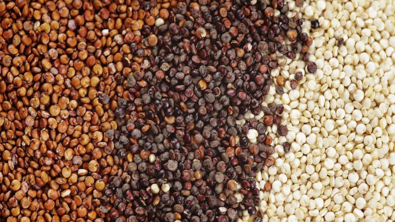 Astronotların temel gıdası Kinoa Adıyaman'da üretiliyor!| Kinoa, Quinoa