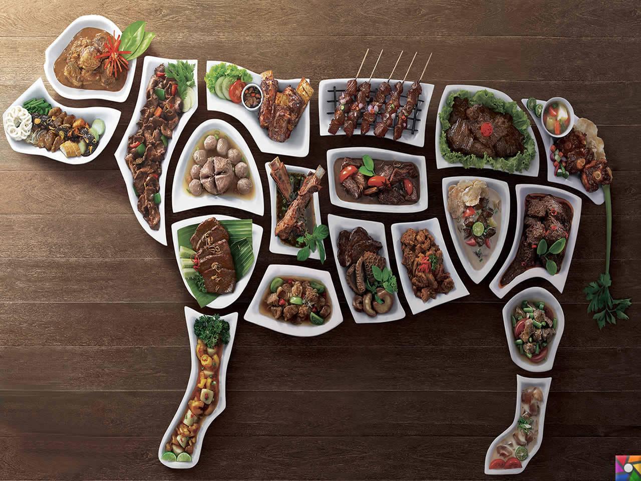 Besin Grupları Nelerdir? Besinlere göre nasıl dengeli beslenmeliyiz? | en kaliteli proteinler ette vardır.