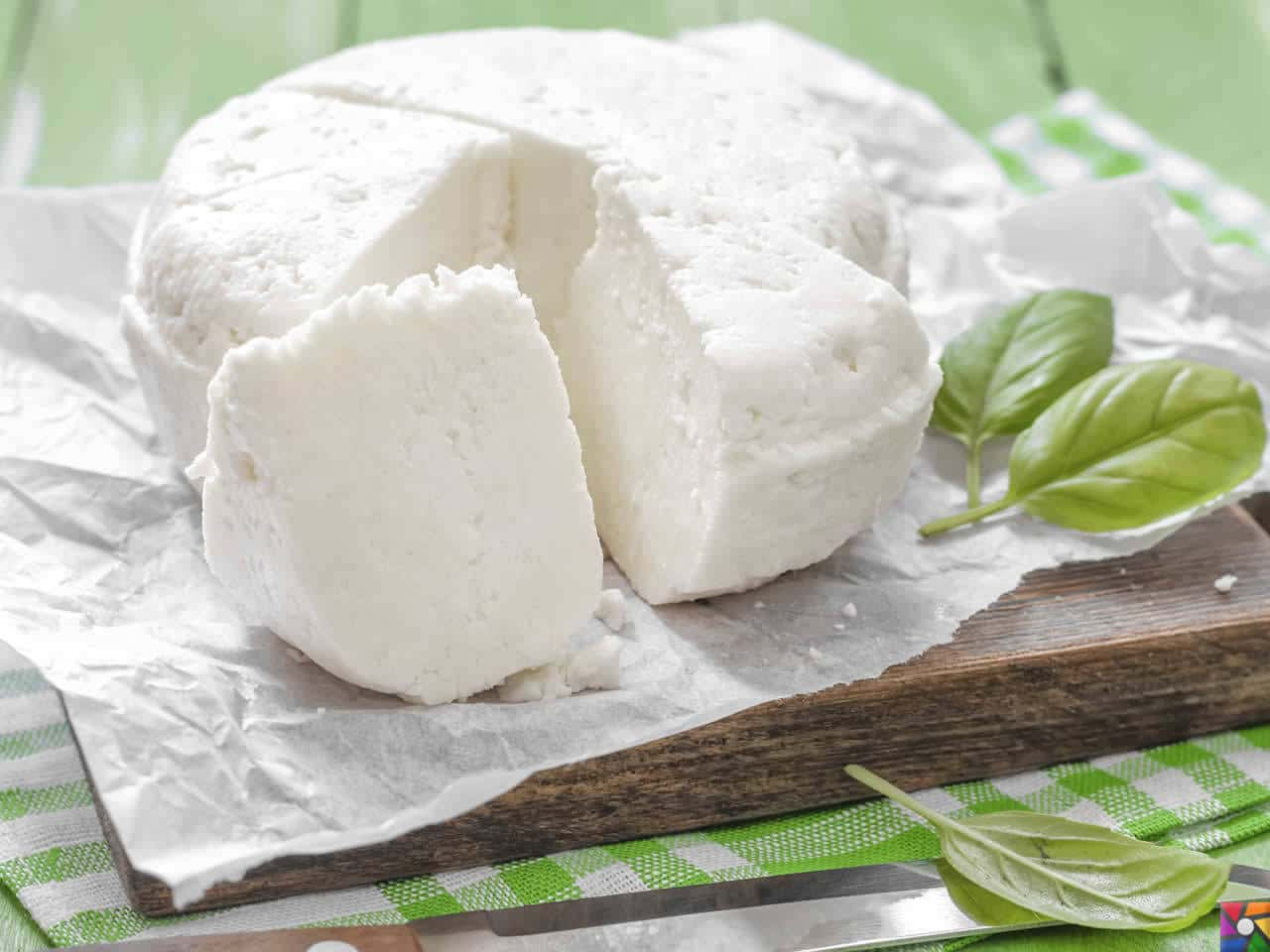 Besin Grupları Nelerdir? Besinlere göre nasıl dengeli beslenmeliyiz? | Süt ürünlerinden doğal peynir yapmayı hiç düşündünüz mü?