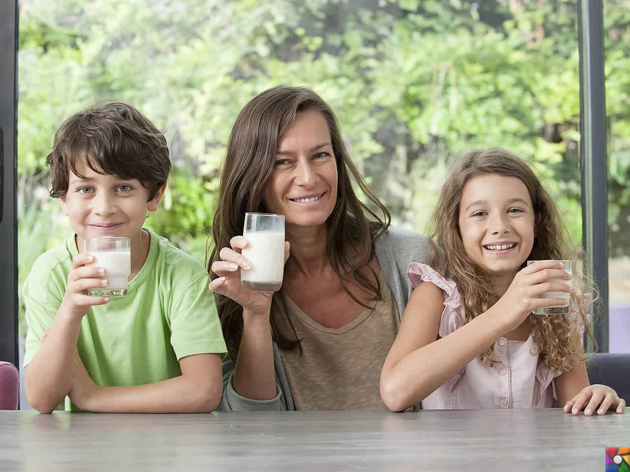 Besin Grupları Nelerdir? Besinlere göre nasıl dengeli beslenmeliyiz? | Süt için, süt içirin!
