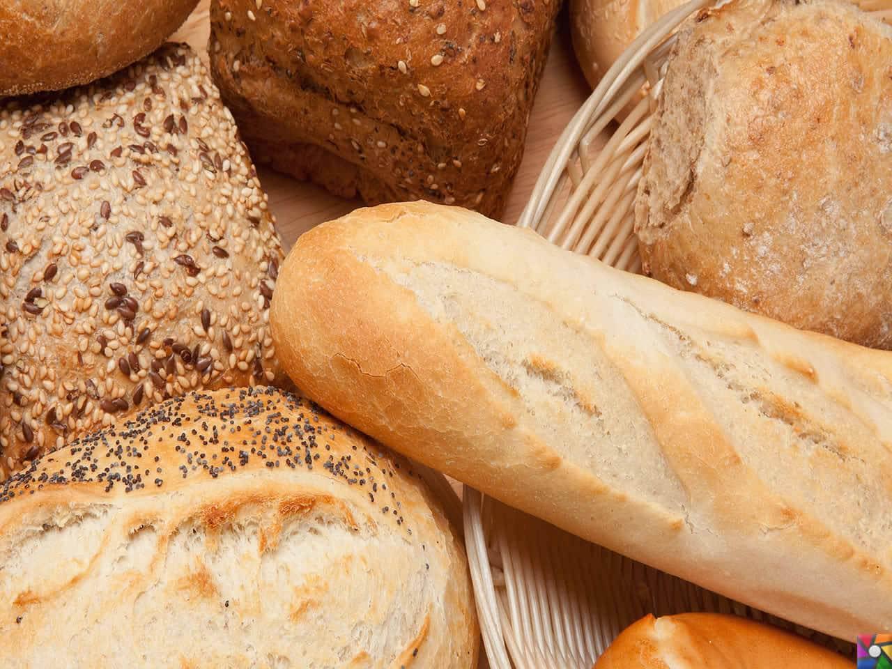 Besin Grupları Nelerdir? Besinlere göre nasıl dengeli beslenmeliyiz? | Tam tahıllı ekmekler tüketin