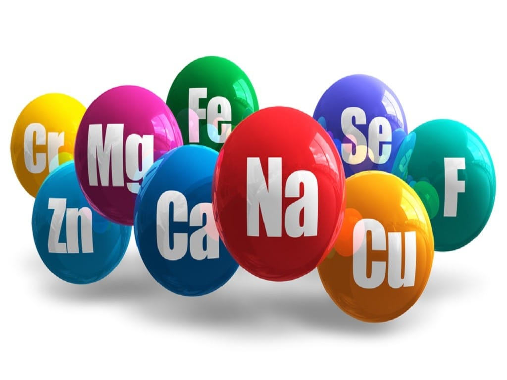 Dengeli Beslenmede bilinmesi gereken besin öğeleri nelerdir? | Mineraller