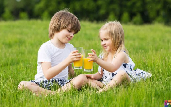 Fast Food Nedir?, Zararları Nelerdir? | Çocuklara doğal kendi yaptığınız meyve suları hazırlayın