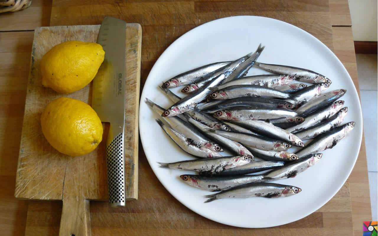 Hamsiyi kılçığıyla yemenin ne yararı vardır? | Hamsinin yanında bol limonlu yeşil salata ile vitamin ve mineral eksikliğinizi giderebilirsiniz.