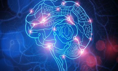 İnsanlar beyinlerinin ne kadarını kullanırlar?