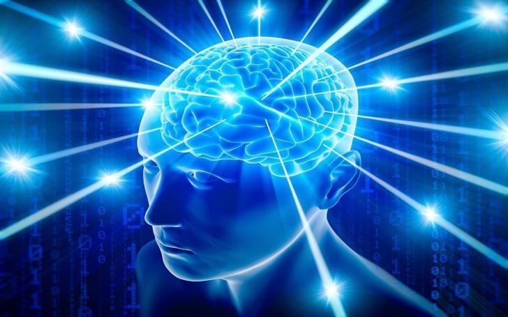 İnsanlar beyinlerinin ne kadarını kullanırlar? | İnsan beyni kullanım oranı sabit değildir.