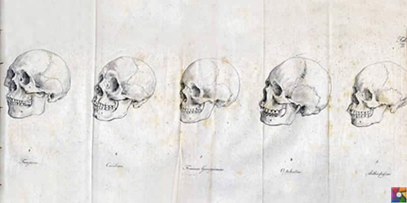 Johann Friedrich Blumenbach Kimdir? | Orjinal kendi hazırladığı 5 tür kafatası