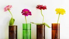Elinizdeki boş cam şişe ve kavanozları nasıl değerlendirebiliriz?