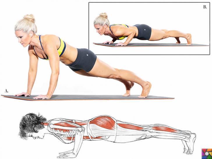 Evde Kol kaslarını geliştirmek için 4 farklı şınav taktiği | Chaturanga tipi şınav yoga'da yapılır.
