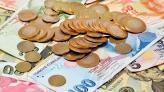 Dünya genelinde 2017 yılına en kötü başlayan para birimi Türk Lirası!