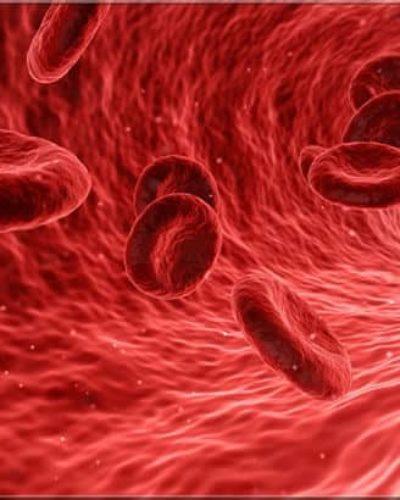 Kan Şekeri Nedir? Kan Şekeri Neden Düşer?