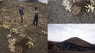 Manisa'daki 26 bin yıllık ayak izlerinden sadece 15 tane kaldı!
