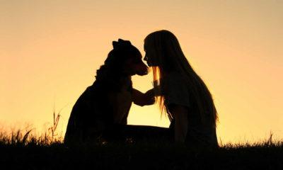Bana köpeğini göster sana kim olduğunu söyleyeyim!