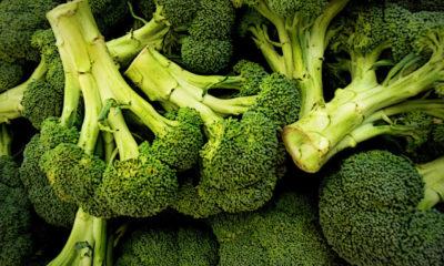Brokoli Nedir? Brokolinin faydaları nelerdir? Brokoli nasıl yenmeli?