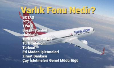 Türkiye'de neden şirketler varlık fonuna devir ediliyor?