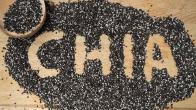 Chia (Çiya) Tohumu Zayıflatır mı? Faydaları ve Zararları Nelerdir?