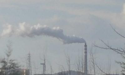 İzmir Aliağa'da kanserden ölüm oranlarında ciddi artış yaşanıyor!