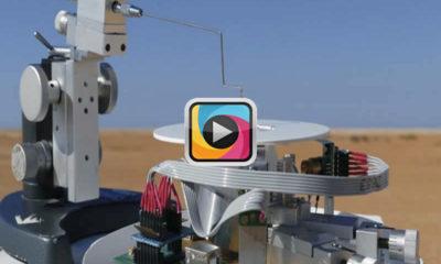 Robot otomasyonu için karıncanın doğal navigasyonu çözülmeye çalışılıyor