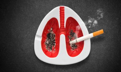 Dünyada ölen her 10 kişiden birinin nedeni Sigara!