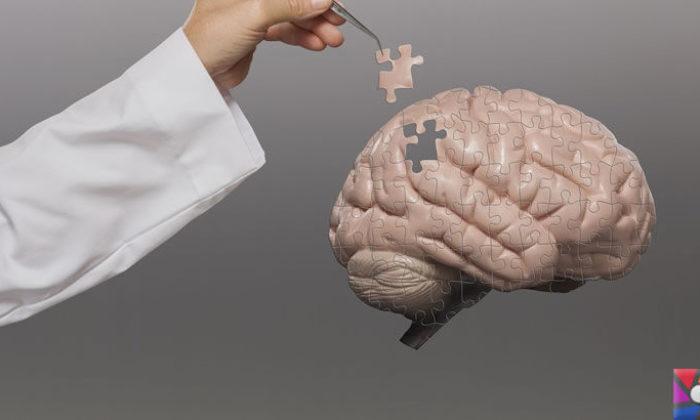 Uzun süre çalışmanın insan beynine verdiği zararlar nelerdir?