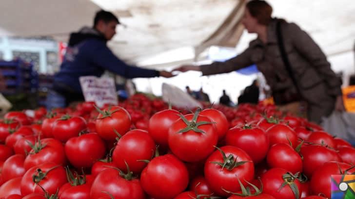 Domates neden pahalı? Domates fiyatları Türkiye'de neden yüksek? |  Tarla domates gelmeden fiyat düşmez