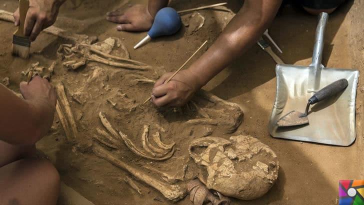 Arkeolog Nedir? Arkeolog Nasıl Olunur? | Arkeologlar insanlık tarihine yön verir