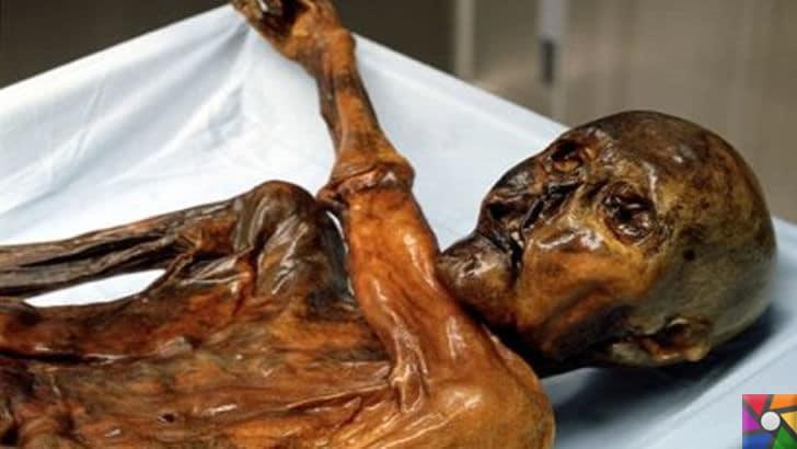 Dünyanın ilk faili meçhul cinayeti 5300 yıl önce işlenmiş! | Ötzi'nin korunmuş mumyası