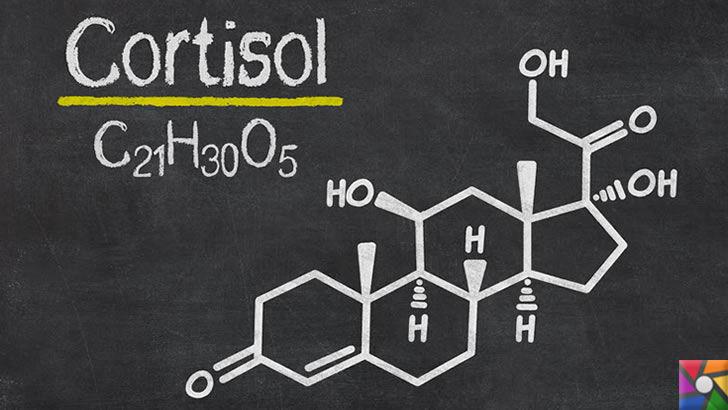 Kortizon Nedir? Kortizon Neden Kullanılır? Yan Etkileri Nelerdir? | Kimyasal yapısı