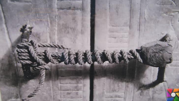 Tutankhamun'un Laneti ve Mumyaların gizli DNA kodları | Kırılan Mühür