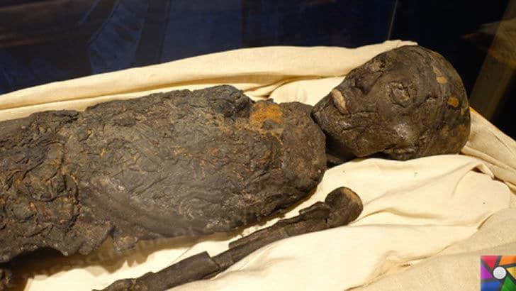 Tutankhamun'un Laneti ve Mumyaların gizli DNA kodları | Mumyaların kemik ve dişlerinde gizli dna'lar bulundu