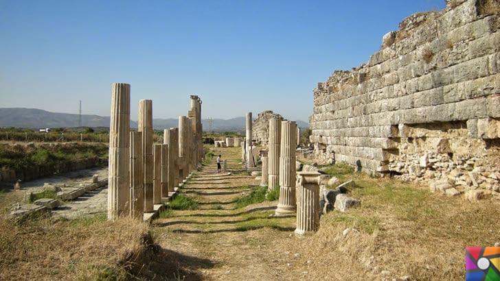 Afrodisias Antik Kenti nerede? Tarihçesi ve Kalıntıları nelerdir? |Sütunlu yol