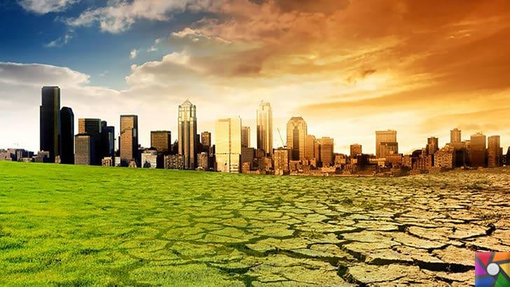 Dünyayı kasıp kavuran sıcaklıkların nedeni Küresel Isınma! | Küresel ısınma büyük şehirlerdeki yaşamı etkilemeye başlayacak