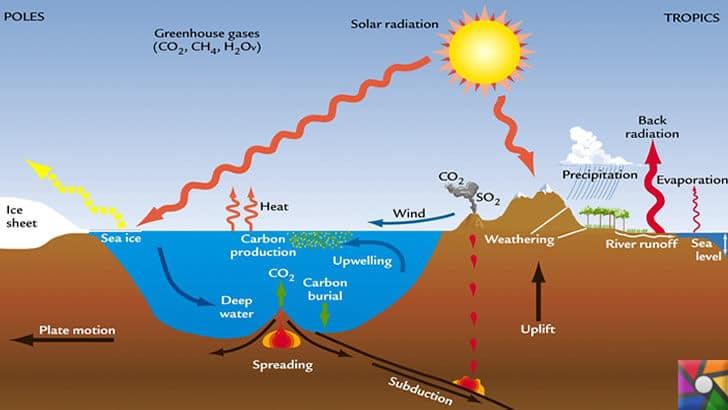 Dünyayı kasıp kavuran sıcaklıkların nedeni Küresel Isınma! | Karbon salınımının deniz ve karada işleyişi