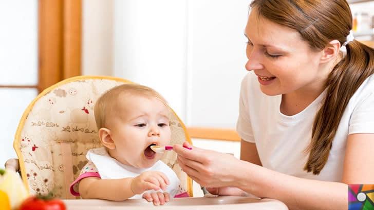 Bebeklerde Ek Besinler (Ek Gıdalar) ne zaman ve nasıl başlanmalı? | Ek gıdalar verilirken besin öge zenginliğine dikkat edilmelidir