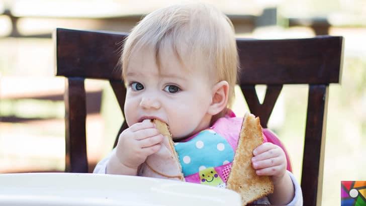 Bebeklerde Ek Besinler (Ek Gıdalar) ne zaman ve nasıl başlanmalı? | Ek gıdalar alan bebek her 2 elini kullanabilir duruma geldiğinde katı gıdalar alıştırılabilir