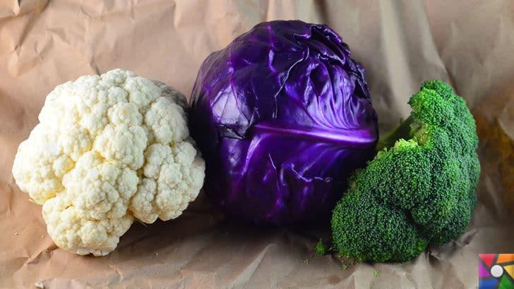 Karnabaharın bilinmeyen özellikleri ve faydaları nelerdir? | Karnabahar ailesinden kırmızı lahana ve brokoli