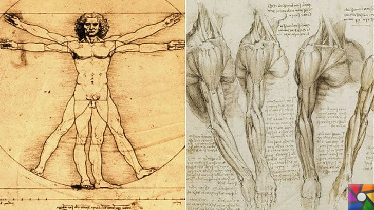 a brief biography of leonardo da vinci and his contributions to art science and humanity Leonardo da vinci's father was leonardo da vinci's full name was leonardo di growing up, da vinci learned about science and art his father arranged.