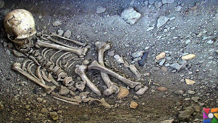 Adli Antropoloji nedir? Adli Antropolog kimdir? Adli Antropoloji Süreci | Antropologlar, İnsan iskeleti hakkında çok iyi bilgi sahibidirler