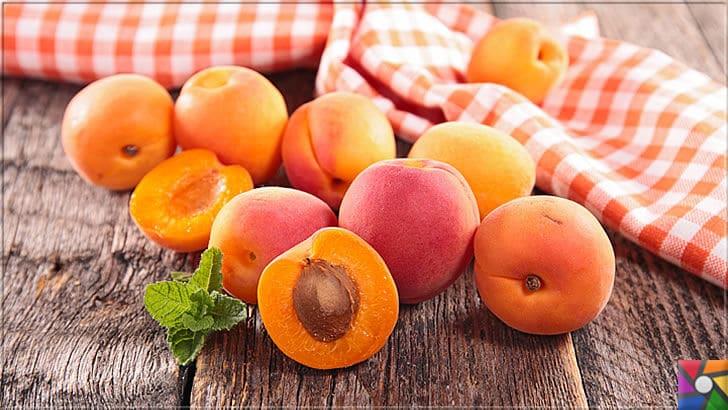 Kayısının Meyvesi, Çekirdeği, Yağının faydaları ve zararları nelerdir? | Kayısı Meyvesi Beslenme menülerinde her yaşta tüketilmeli özellikle Çocuklara yedirilmeli