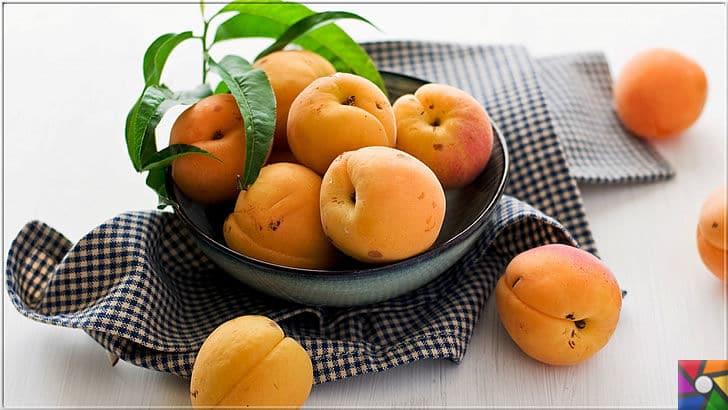 Kayısının Meyvesi, Çekirdeği, Yağının faydaları ve zararları nelerdir? | Kayısı Meyvesi süper besindir