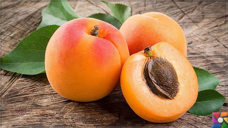 Kayısının Meyvesi, Çekirdeği, Yağının faydaları ve zararları nelerdir? | Dünyada en kaliteli kayısı üreten yer Malatya ilidir