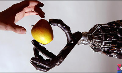 Hayatımızı Kolaylaştıran Teknolojiler Nelerdir? Teknolojinin Yaşama Etkisi