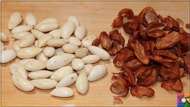 Kalp ve Damar sağlığı için neden badem yemeli? Bademin harika faydaları | Bademin rengi beyaz ise tazedir